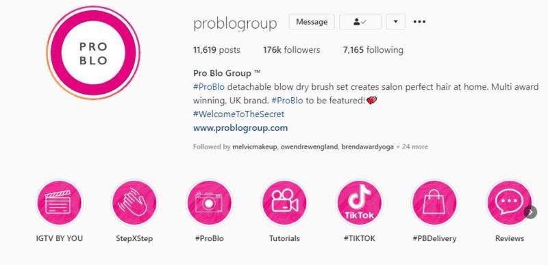 Instagram profile example Pro Blo