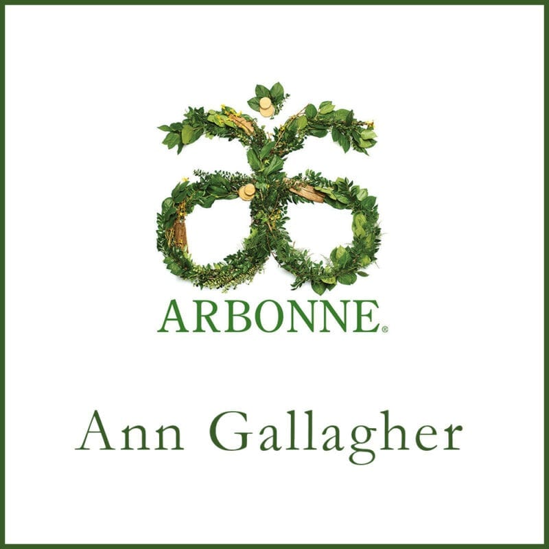 Arbonne Consultant – Ann Gallagher