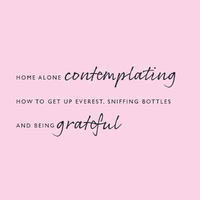 Pink-Link-Ladies-Networking-Blog---Home-alone-contemplating-how-to-get-up-Everest-sniffing-bottles-and-being-grateful