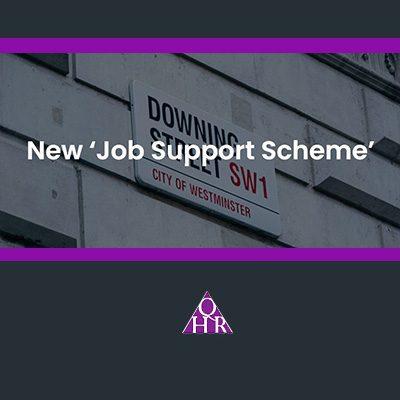 Pink-Link-Member-Blog-QHR-New-Job-Support-Scheme