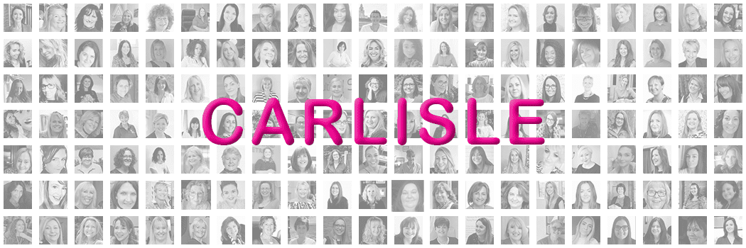 Pink Link Ladies Networking For Women in Business Banner Carlisle